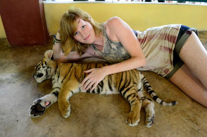 The smallest tigers you can touch